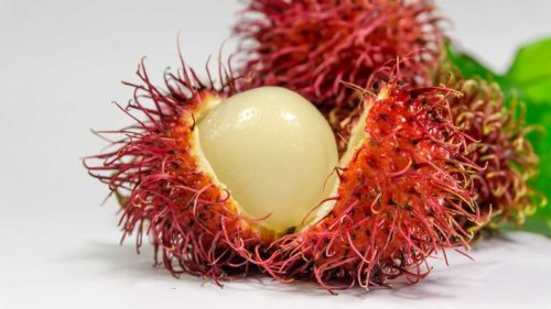 rambutan exotic fruit