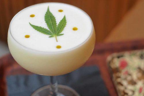cbd cocktail drink san diego