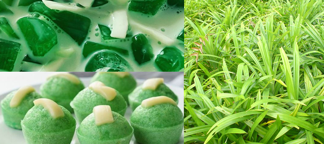 Pandan: eat your greens in a sweet new way