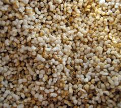 amaranth ancient grains superfood