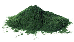 chlorella superfood