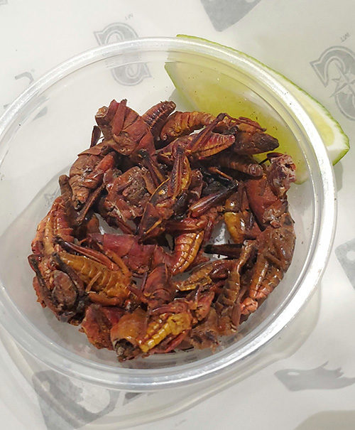 Major League Baseball MLB foods Seattle Mariners toasted grasshoppers