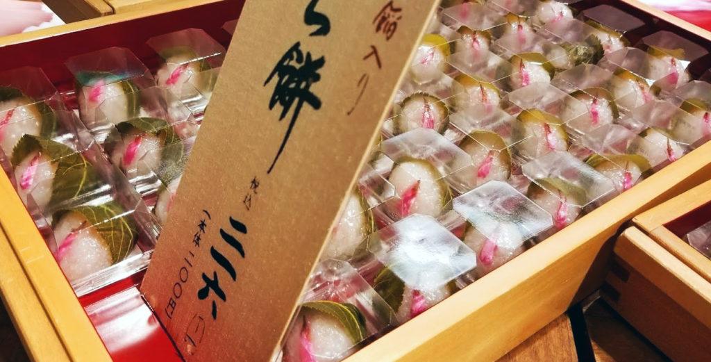 sakuramochi sakura mochi