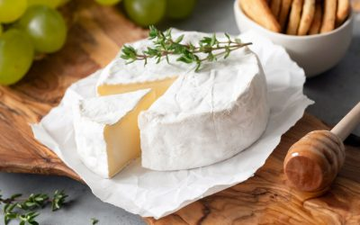 Brie Cheese: get to know this essential soft French cheese