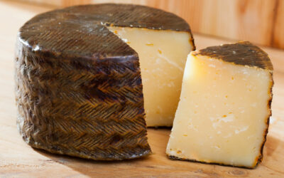 Manchego: what you must know about this Spanish cheese